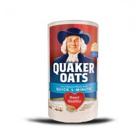 quaker_oats_510gr