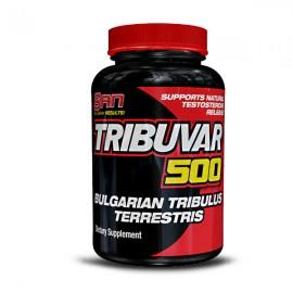 SAN_TRIBUVAR_500