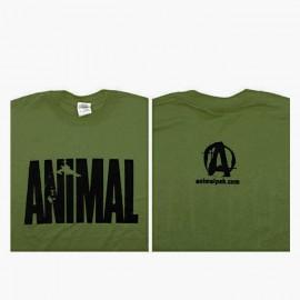shirt_verde