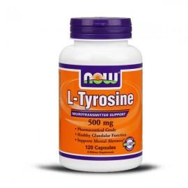 n_tyrosine_500_1