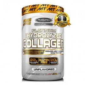 muscle_collagen
